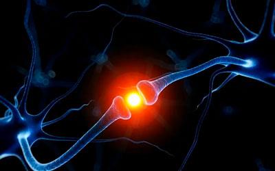 Препятствуют обратному захвату нейромедиаторов - Алко-помощь