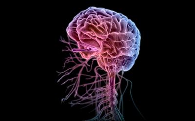 Поражения центральной нервной системы - Алко-помощь